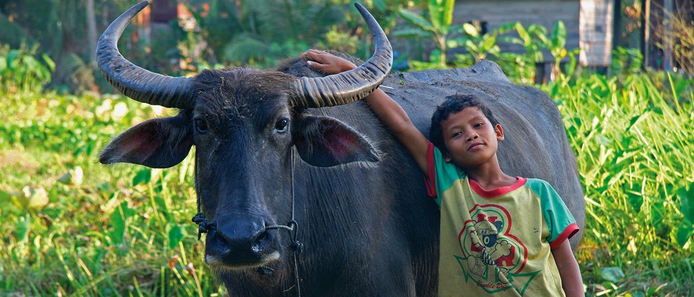 This Life Cambodia